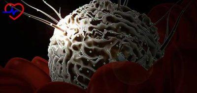 kanser-kok-hucresi